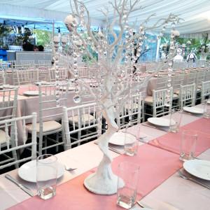 Vogue White Manzanita Tree with Crystal Garlands